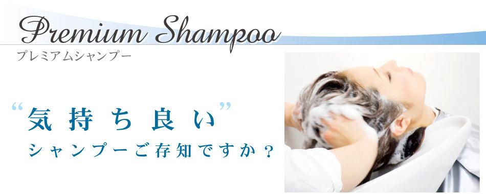 2014_09_pshampoo_01.jpg