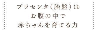 2016_05_placenta08.jpg