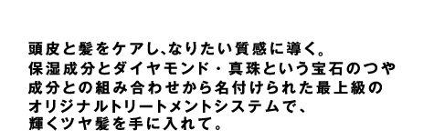2017_02_pf07.jpg