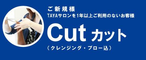 2017_07_cut.jpg